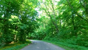 Driving on country road in green forest, Poland stock video footage