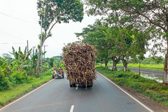Driving in the countryside from Java in Indonesia transporting g Royalty Free Stock Photography