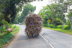 Driving in the countryside from Java in Indonesia Stock Image