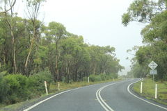 Driving on curve winding  Arthur Road, Tasmania. Way from Boomer Island and Boomer bay on Arthur Highway on way to Port Arthur, Hobart, Australia Royalty Free Stock Photo