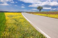 Driving on an empty asphalt road through the idyllic area Stock Photos