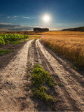 Driving on an empty dirt road at sunset Royalty Free Stock Photography
