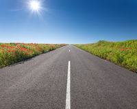 Driving on an empty road at sunny day Royalty Free Stock Photos