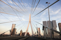 Driving on Erasmus Bridge Royalty Free Stock Image