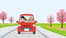 Driving  family - cherry tree road - EPS10 Royalty Free Stock Photo