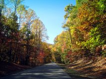 Driving through foliage Stock Images