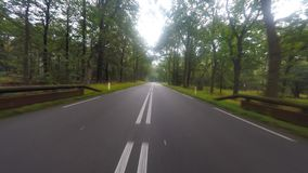 Driving footage on a European country road. Driving footage on a European forest country road stock video