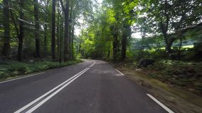 Driving footage on a European country road. With sunshine rays stock footage