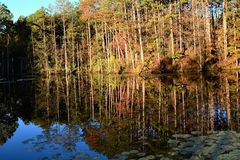 FALL REFLECTIONS. While driving in Green and Sullivan State forest I came across this quiet image. The reflection seamed to tell it all, the time of year, the Royalty Free Stock Photography