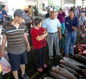 Driving a Hard Bargain at the Fish Market Royalty Free Stock Photos