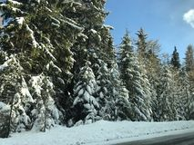 Driving home for Christmas. Winter time in Slovakia Stock Images