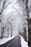Driving In Winter Royalty Free Stock Images