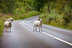 Driving in Ireland Stock Photos