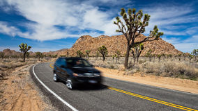 Driving in Joshua Tree Royalty Free Stock Image