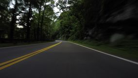Driving Through Lush Forests in Summer