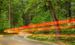 Driving through a national park Royalty Free Stock Photography