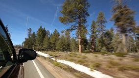 Driving near an evergreen forest stock video footage