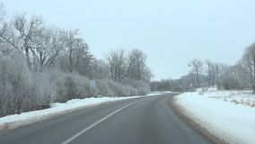 Driving on paved road in winter season between frozen trees and ground. 4K. Driving on paved road in winter season between frozen trees and ground. Front car stock video