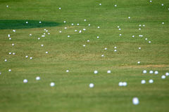 Driving Range. Golf balls on the grass at a driving range Royalty Free Stock Photos