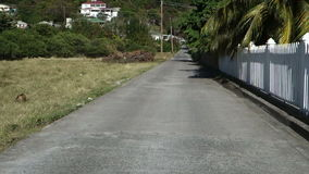 Driving from a resort at friendship, bequia stock video