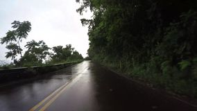 POV car driving in Maui Hawaii. Driving on Road to Hana in Maui Hawaii stock video footage