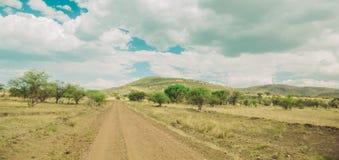 Driving through the Serengeti Stock Image