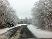 Driving through snow covered trees Royalty Free Stock Photo