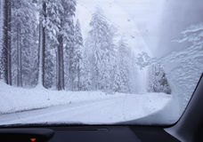Driving though snowy forest Stock Images