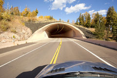 Driving to a Tunnel Royalty Free Stock Photos