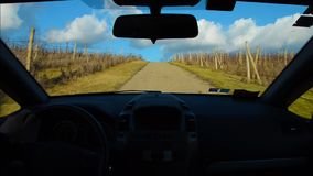 Driving trip on road through vineyards. In Tuscany Italy stock footage