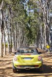 Driving through the vineyards in Margaret River royalty free stock photography