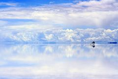 Driving on wet saltflats Stock Image