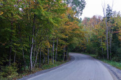 Driving through wood with  early fall colors. A curve in the road leading through trees with early fall foliage Royalty Free Stock Photos