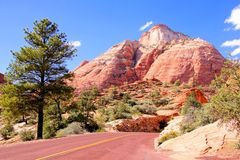 Driving through Zion National Park Royalty Free Stock Images