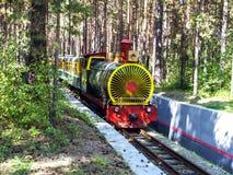 Drivit järnväg drev för tappning ånga Ångadrev på en parkerabakgrund Den Retro ångalokomotivet passerar till och med parkera Royaltyfri Foto