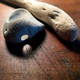 Drivved och sten Arkivfoton