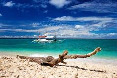 Drivved på en härlig strand Royaltyfria Bilder