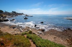 Drivvedinloggningskraftfull och stenig central Kalifornien kustlinje på Cambria Kalifornien USA arkivbilder