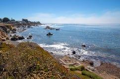 Drivvedinloggningskraftfull och stenig central Kalifornien kustlinje på Cambria Kalifornien USA arkivfoto