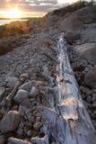 Drivvedjournal, solnedgång och stenblock på stranden i Connecticut Arkivfoto