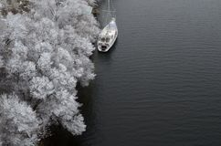 Drizzle in the trees on the shore. Yacht at the rocky shore, drizzle on trees Stock Image