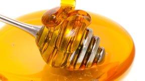 Drizzler de la miel Imágenes de archivo libres de regalías
