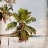 Dröm- strandGrungebakgrund Royaltyfria Bilder