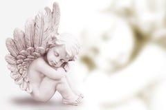 Drömma ängel Arkivbilder