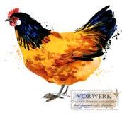 Drobiowy uprawiać ziemię Kurczak hoduje serie domowy rolny ptak Zdjęcie Stock