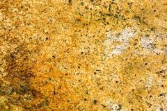 Drobnoustrojowe bąbel maty, Orakei Korako Termiczny park Zdjęcie Stock