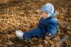 Droevige baby op droge bladeren Stock Foto
