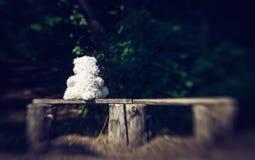 Droevige eenzame teddybeer en bank in de oude tuin royalty-vrije stock fotografie