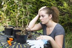 Jonge vrouw die met tuin pruner in tuin werken stock foto afbeelding 59312434 - Foto droge tuin ...