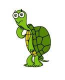 Droevige schildpad royalty-vrije stock fotografie